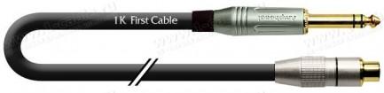 Фото1 1K-AIC129 Межблочный кабель   RCA гнездо > Jack 6.3 стерео штекер