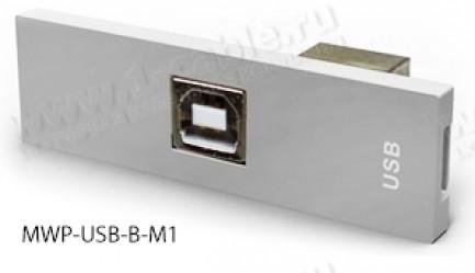 Фото3 MWP-.. Модуль для комбинированной настенной розетки, серия Modular Wall