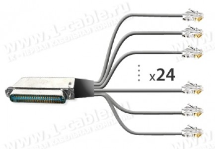 Фото1 1K-BIT53-24MM-0. Кабель для передачи данных, RJ21 Telco/Amphenol RJ21 штекер >24x RJ11 штекер